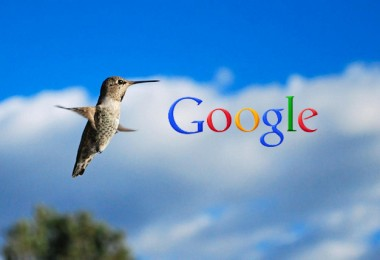 google-hummingbird-jpeg